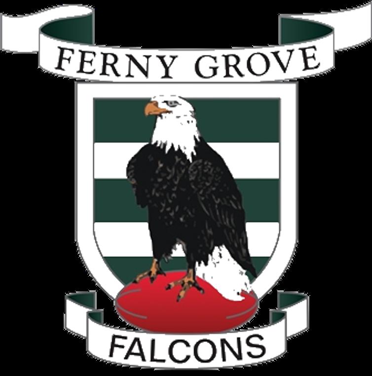 Ferny Grove Falcons